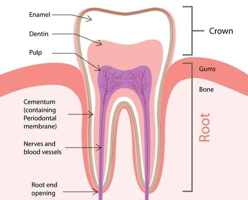 teeth whitening enamel